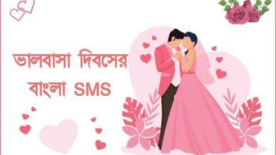 99+ বিশ্ব ভালোবাসা দিবসের বাংলা SMS - রোমান্টিক ভালোবাসার মেসেজ ও এসএমএস কালেকশন ২০২১